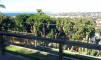 view from deck in back